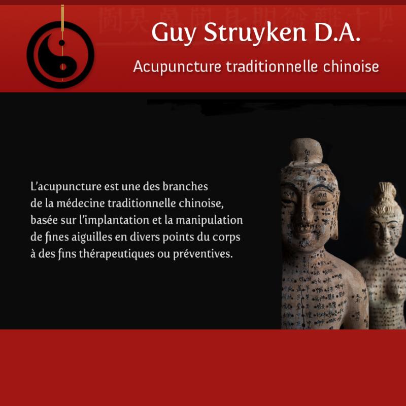 Guy Struyken Acupuncteur Namur